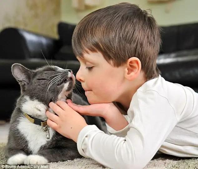 gatoyninoautista - Billy, un gato abandonado y adoptado que ayuda cada dia a un niño autista