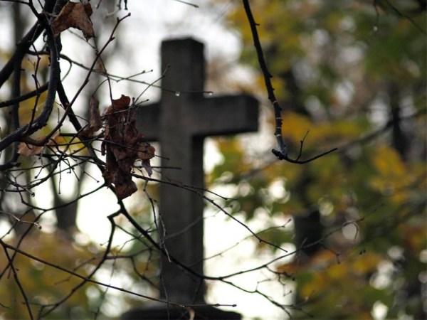 Реформа ритуальных услуг: безопаснее, дешевле, честнее ...