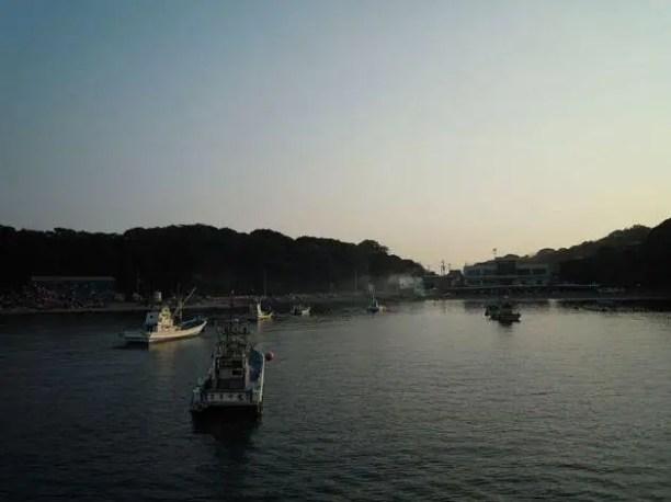 62576161134da7d0baa3o - Tashiro, la Isla de los Gatos