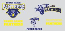 Panthers-Comps