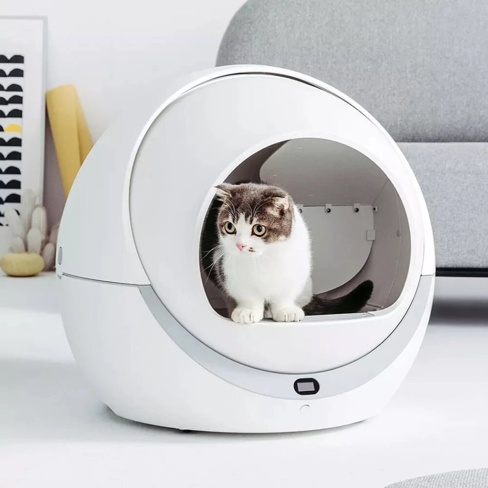 Petree Smart Wifi Automatic Sensor Cleaning Cat Litter Box Self Cleaning Closed Tray Toilet for Pet Fun Cat Toilet Shoveling Machine