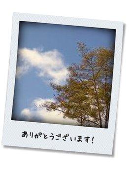 マザー ネイチャーズ サン Mother Nature's Sonいい天気