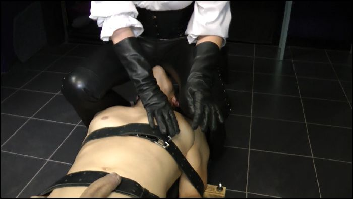 Lady Adena – Lady Adena Leather Ass Worship Facesitting (iwantclips)