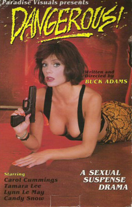 Dangerous (1990)