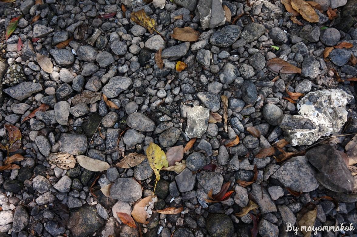 Rocks and pebbles near the stream.