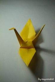 6_yellow_withFullwing