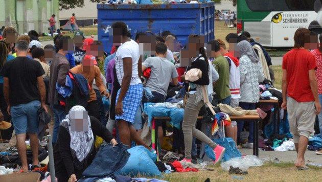 Korrupter Beamter verkaufte Asylbescheide! (Bild: APA/EINSATZDOKU.AT)