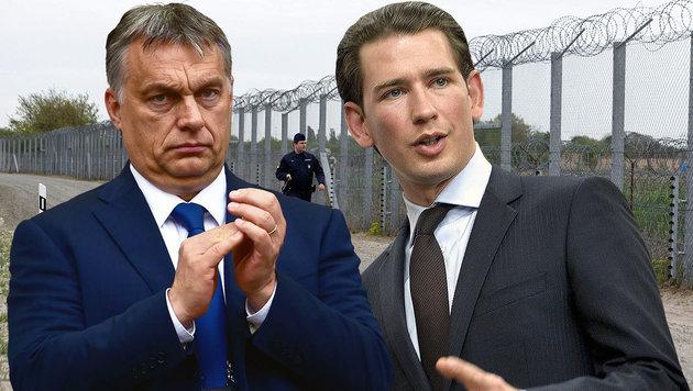 Kurz lobt Orban für Sicherung der Schengengrenze (Bild: AP, APA/Herbert Neubauer, EPA/Stephanie Lecocq)