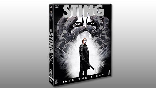 watch sting into the light 2015 dvd