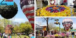 Еднодневна екскурзия до Бургас за Националната изложба на цветя Флора 2021, плюс посещение на Поморие