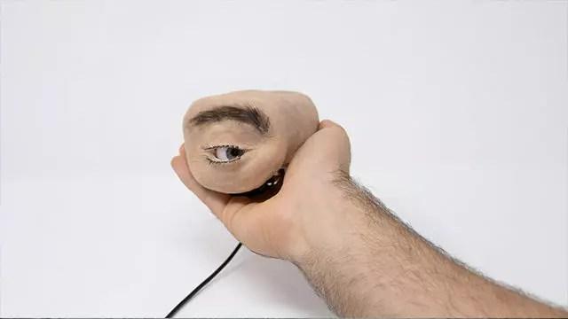 Eyecam-1