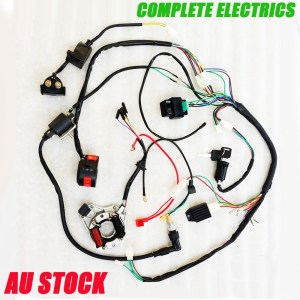 COMPLETE ELECTRICS ATV QUAD 50cc 70cc 110cc 125cc coil cdi assembly wire harness | eBay