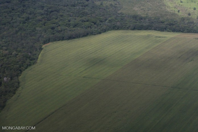 Deforestation for soy in Brazil. Image by Rhett A. Butler/Mongabay.