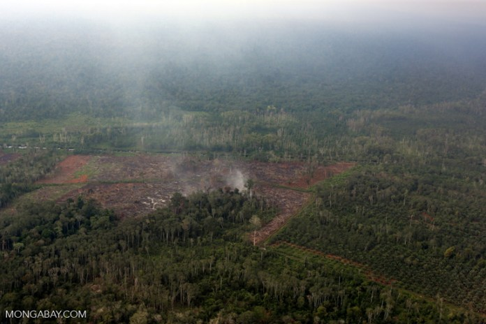 Peatlands buring in Indonesia in 2014 to make way for oil palm. Image by Rhett A. Butler/Mongabay.