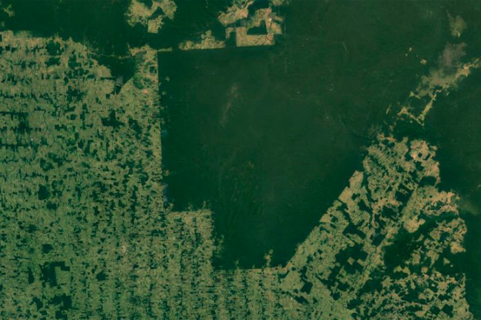 Indigenous territories, like the Surui-Paiter territory in Rondonia and Acre, are easily visible by satellite in parts of the Amazon because of the sharp contrast with deforested areas that surround them. Photo credit: NASA