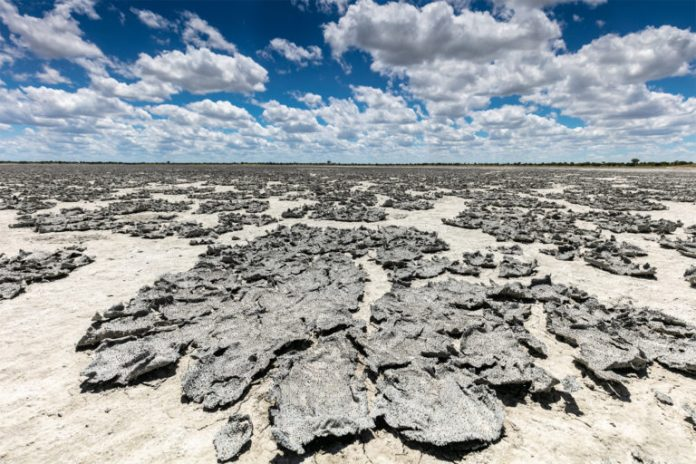 Salt Flakes in Makgadikgadi Pans, Botswana. Intensifying drought in sub-Saharan Africa is pushing the population off rural lands into swelling cities.