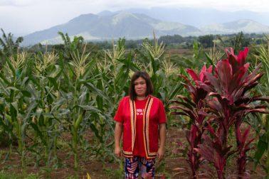 Cheryl Cagaanan y cientos de familias de la comunidad de Manobo-Higaonon fueron desplazadas luego de que un tribunal diera la razón a una empresa para ocupar 307 hectáreas de sus tierras. Foto: Jeoffrey Maitem / Global Witness