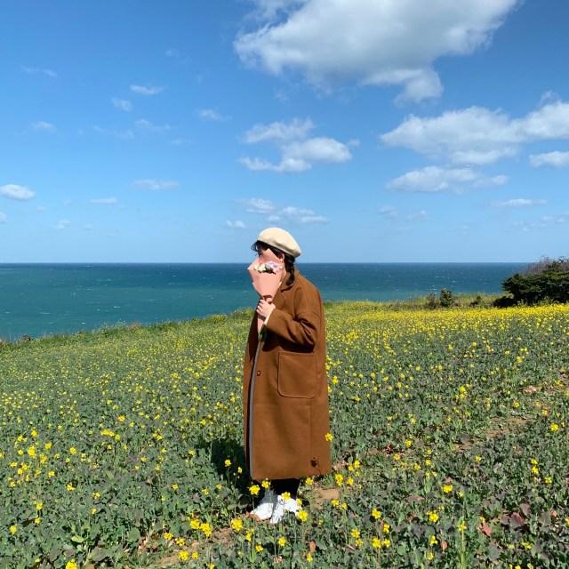 濟州島:咸德犀牛峰海邊
