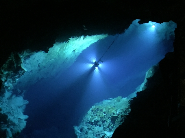 日本三大鐘乳洞:龍泉洞