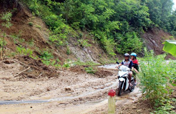 bão số 2, Thanh Hóa, đường nứt toác, đường nghìn tỷ