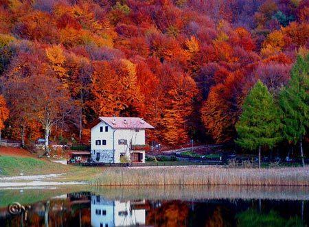 sắc thu, mùa thu, chiêm ngưỡng