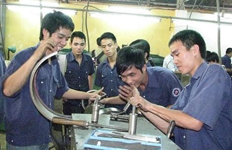 đại học, thất nghiệp, cử nhân, Trần Anh Tuấn, việc làm, Phạm Thị Ly