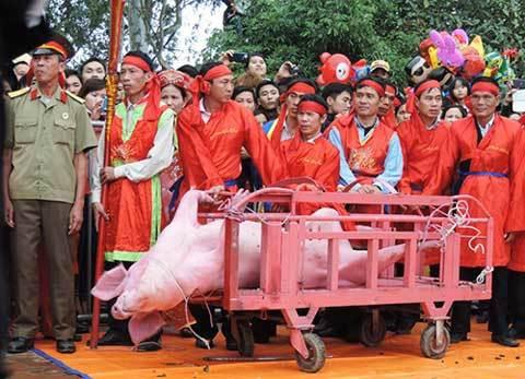 Ấn tượng trong tuần, hạnh phúc, người Việt, choảng nhau, chém lợn, mùa xuân, Kỳ Duyên, Ném Thượng, tai nạn, giao thông