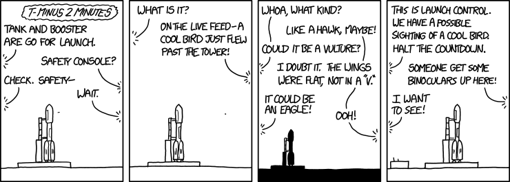 xkcd comic strip with rocket launch halted by a bird sighting