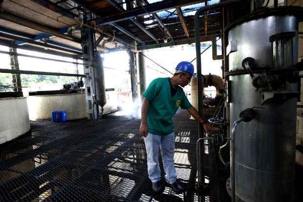 Produção de etanol é uma das saída para o setor sucoralcooleiro no mercado pernambucano. Foto: Teresa Maia/DP/D.A.Press