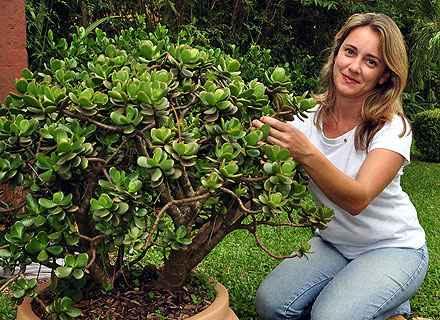 A professora de jardinagem Lúcia Borges recomenda atenção com a drenagem das plantas e o tipo de terra escolhido (Eduardo de Almeida/RA Studio)