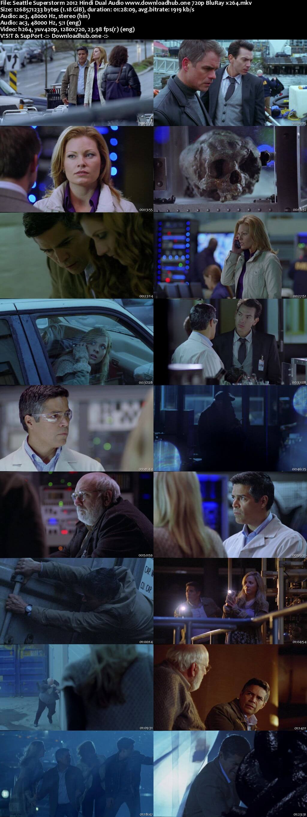 Download Seattle Superstorm 2012 Hindi Dual Audio 720p BluRay