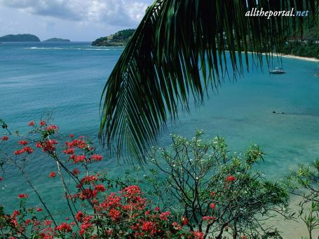 image hosted at ImgTaxi.com