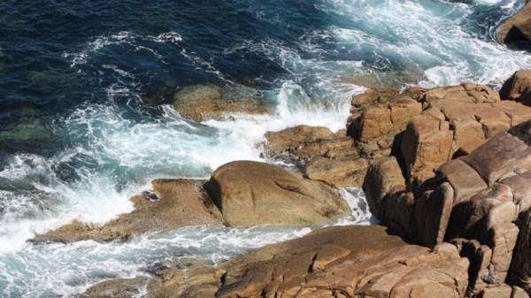 Ученые разгадали тайну желеобразных шаров у берегов Норвегии