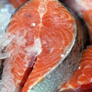 Salmão geneticamente modificado é primeiro animal do tipo a ser liberado para o consumo