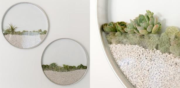 Criado por Kim Fisher, o quadro vivo com espécies de suculentas lembra um terrário