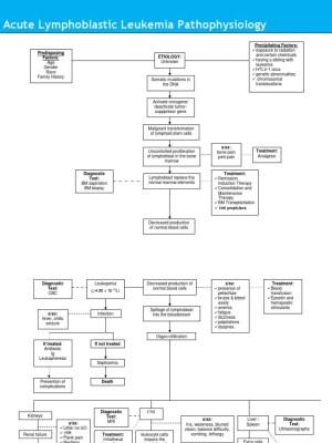 Acute Lymphoblastic Leukemia Pathophysiology Diagram   Leukemia   Dyspnea