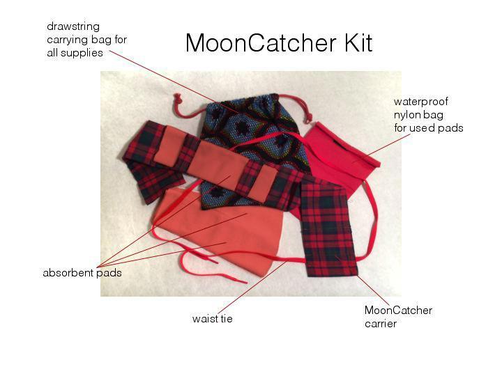 MoonCatcher Kit (see http://www.mooncatcher.org/)