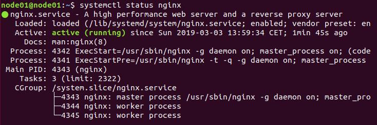 Nginx status