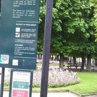 Forår i Luxembourg haven, Paris...vil du med?