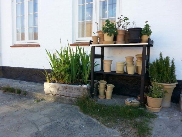 krukke have i Lønstrup