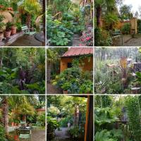 Følg vores eksotiske have på Instagram