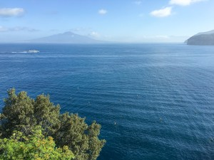 IMG_4783 mount vesuvius bay of naples sorrento italy
