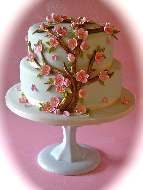 Unbelievable Cake Art - I'm Just Sayin