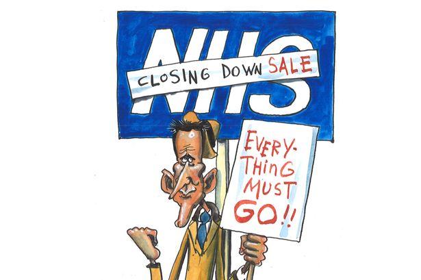 Health NHS for sale | www.imjussayin.com