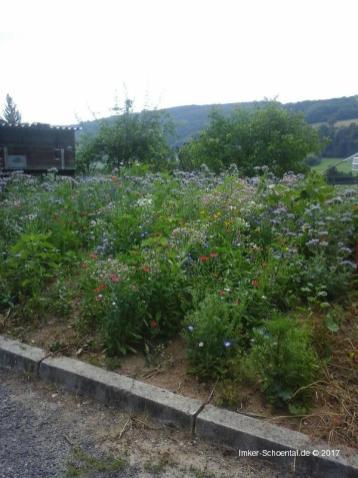 Garten in Winzenhofen