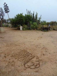Drawing a rain cloud with a stick onto the ground at our farm home © Imke Rust