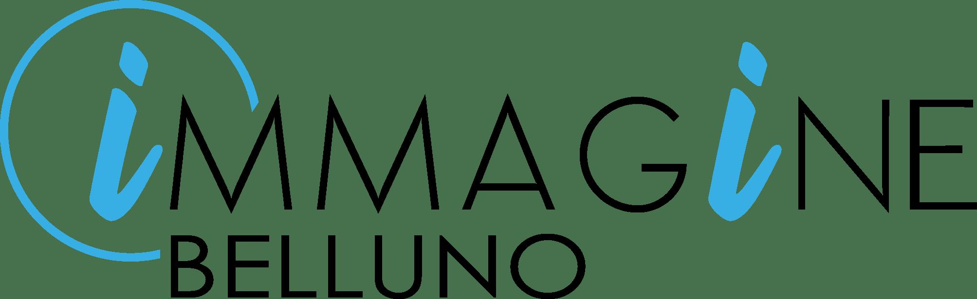 Logo Immagine Belluno