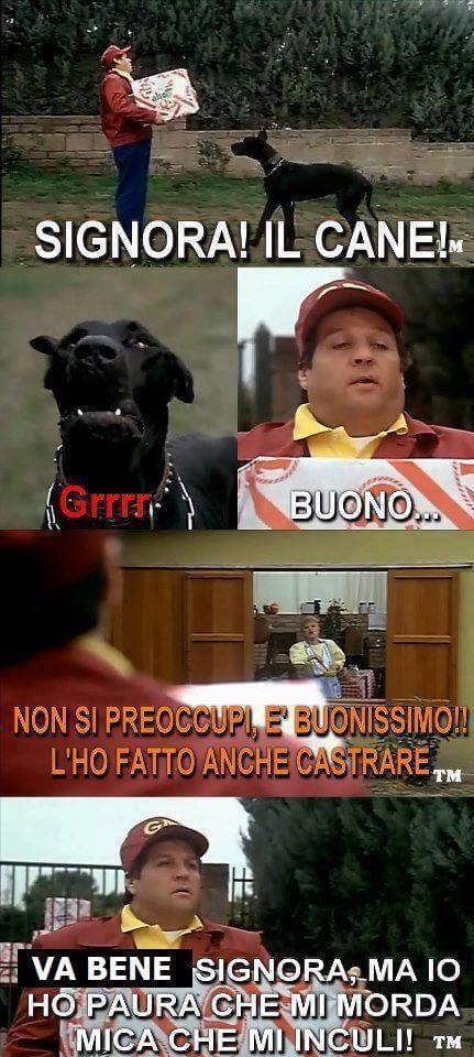 Memes Renato pozzetto