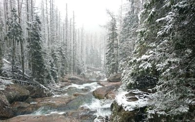 Warum dein nächster Winterurlaub in die Slowakei gehen sollte