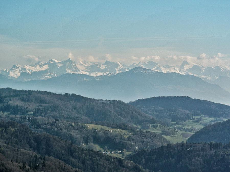 Zürich Reisetipps - Umland mit Alpen im Hintergrund